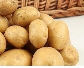 马铃薯2109